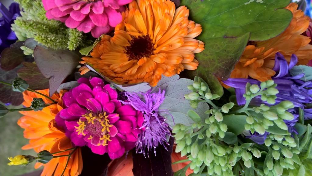 blomsterfrakarinshage2